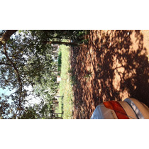 Terreno En Km.10 Acaray